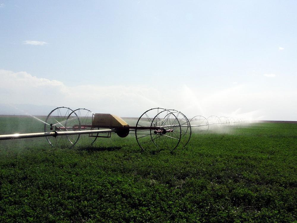 中国节水灌溉网