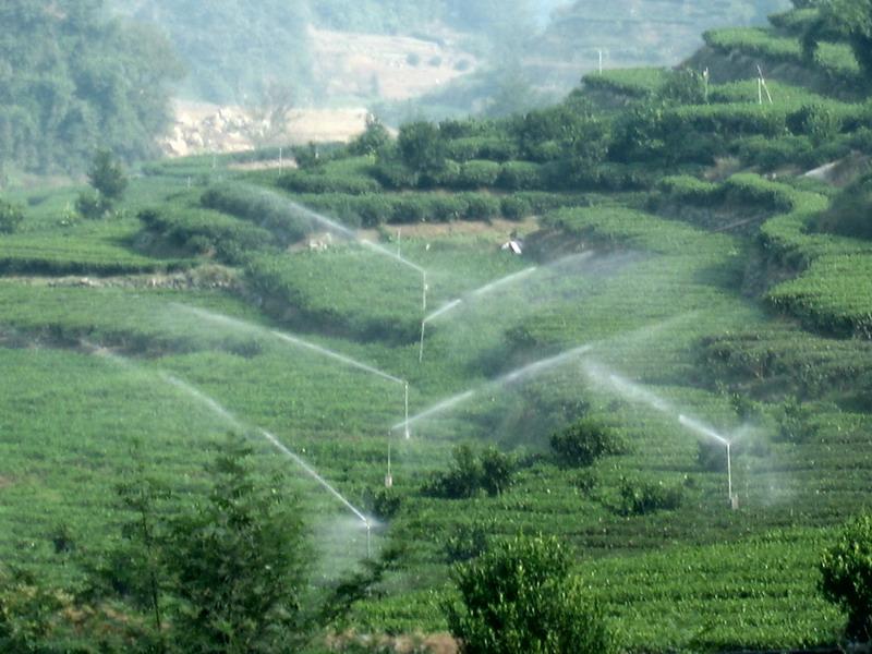 中国节水灌溉网 湖北秭归 茶园 喝上自来水