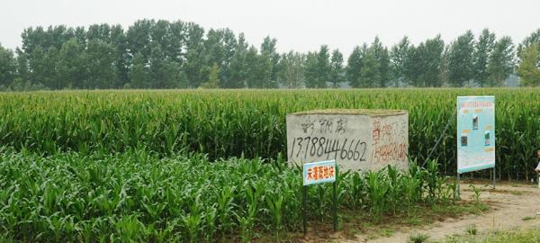 中国节水灌溉网 吉林省召开旱田高效节水灌溉工程建设现场会 要求及
