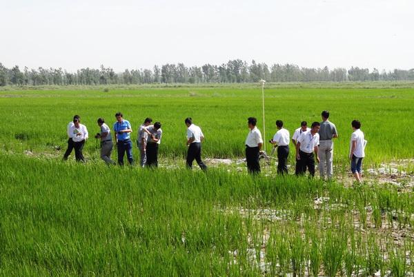 宁夏水利厅召开农村水利工作现场会